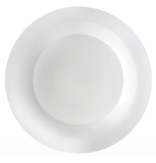 Everyday Dinner Plate