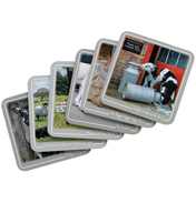 Kitchy & Co 6 Piece Coaster Set (BOXED)